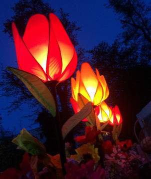 gallery/tulip lights